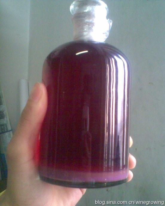 这是用保鲜膜严格包裹瓶盖的我的葡萄酒全貌。